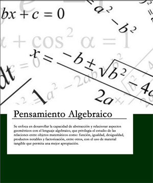 Pensamiento Algebráico